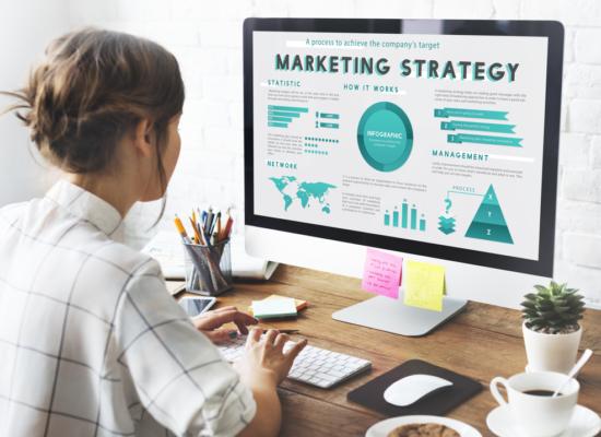 Bachelor in Marketing